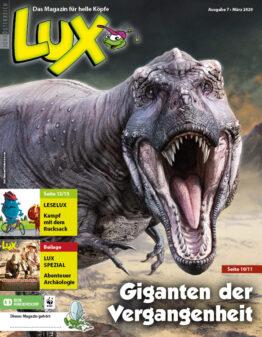 Die Zeitschrift LUX